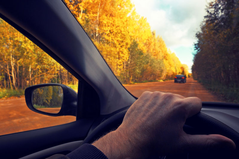 The Dangers of Autumn Driving