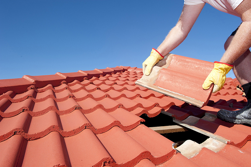 How to Properly Inspect Your Roof for Damage