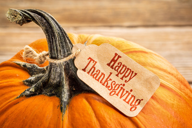 Check Out These Thanksgiving Fun Facts!