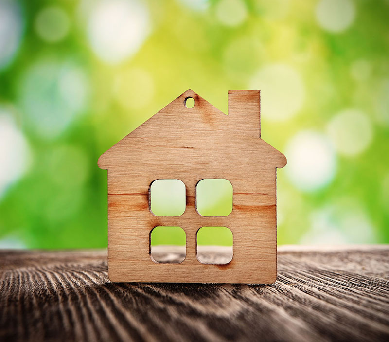 Make Your Home Eco-Friendly for Earth Day!